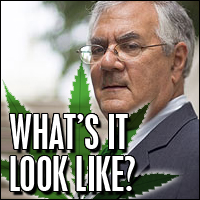 Barney-Frank-And-Weed